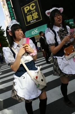 Cafe Maids in Akihabara
